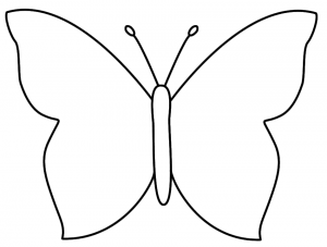 How to Draw Butterfly : Step By Step Guide   How to Draw