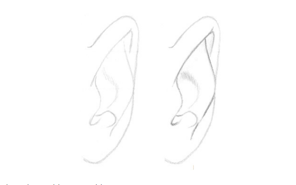From the Front to Draw Ears