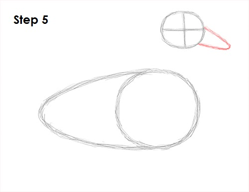 Step by Step Draw Duck