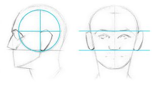 How to Draw Ears on a Face