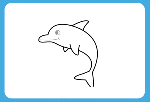 How to Draw Dolphin Step by Step