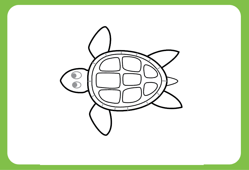 Easy To Draw Turtle