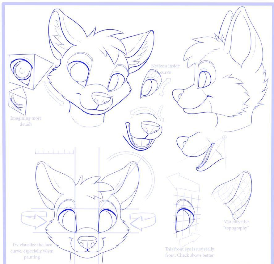 How to Draw a furry fox