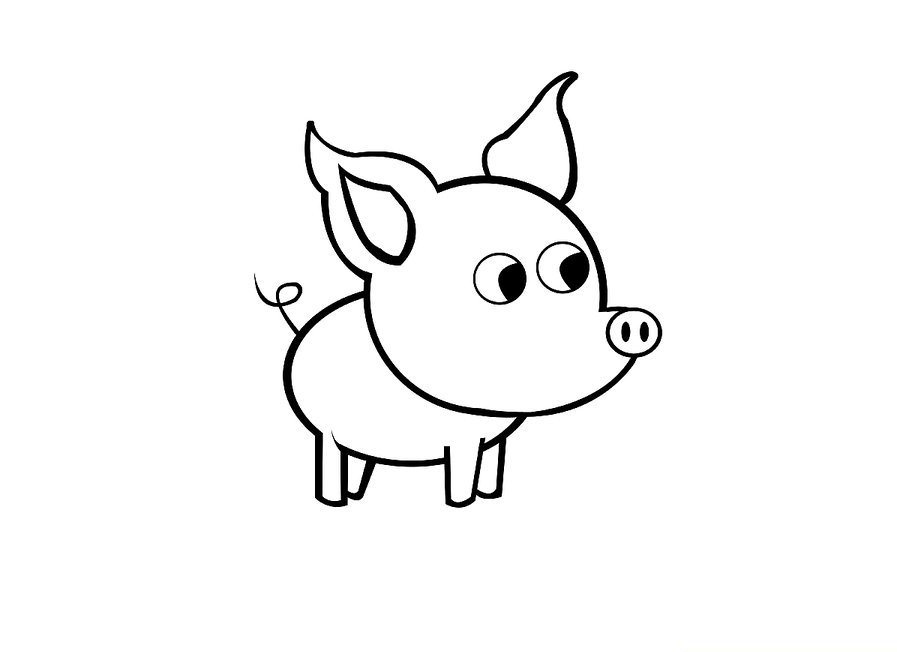 aid1169069-v4-900px-Draw-a-Simple-Pig-Step-9