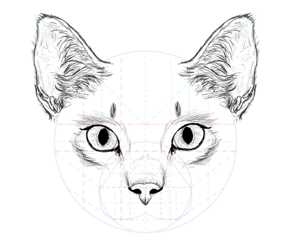 catdrawing_7-7_ears_done