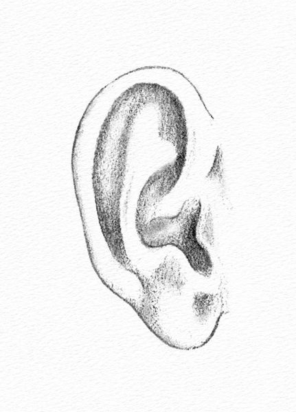ear-drawing-2