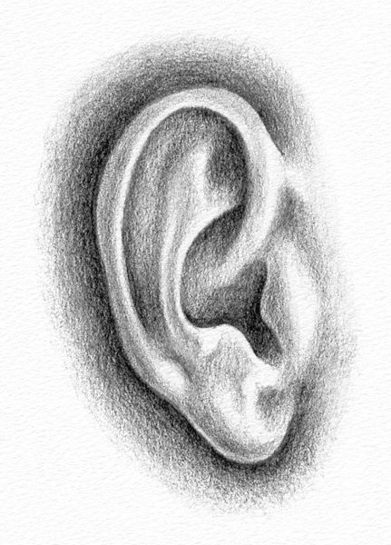 ear-drawing-3
